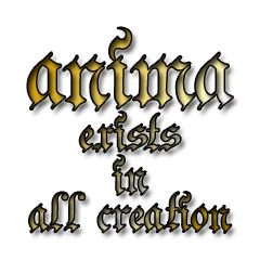 anima exists in all creation